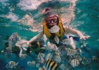 ¿Cuánto cuesta el snorkel en Menorca?
