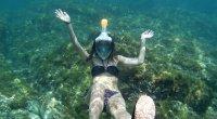 ¿Qué se necesita para hacer snorkel?