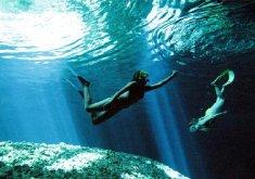 Pack snorkel con lancha en la reserva marina y moto de agua de una hora